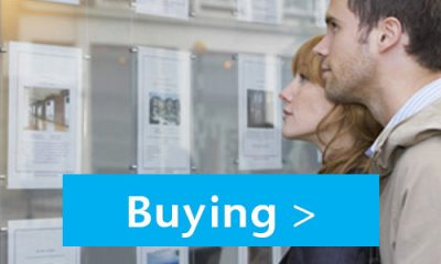 buying_features.jpg